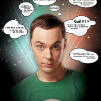 Big Bang Theory - Quotes Poster at AllPosters.com