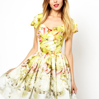 Ted Baker | Ted Baker Haruna Tea Party Border Print Dress at ASOS