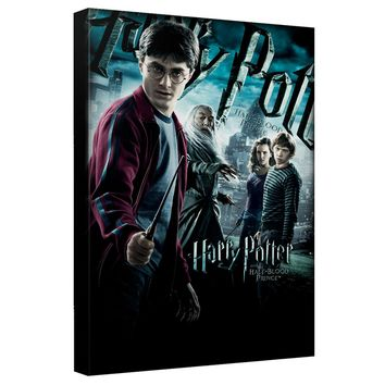Harry Potter - Half Blood Prince Canvas Wall Art With Back Board