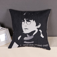 Decorative Harry Potter Throw Pillow