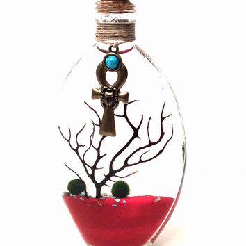 Marino Terrarium Zen Garden Egyptian Decor ONLY 1 AVAILABLE