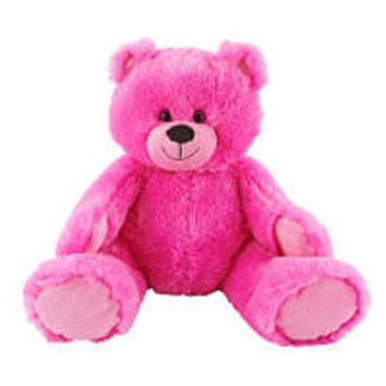 Toys R Us Plush 12 inch Bright Bear - Pink