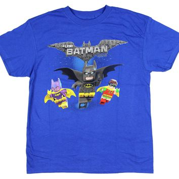 Lego Batman Boys' Robin Batgirl Animated Cartoon Movie Character Cotton T-Shirt