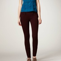 Knit Jegging   American Eagle Outfitters