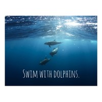 Inspirational bucket list Swim with dolphins Postcard