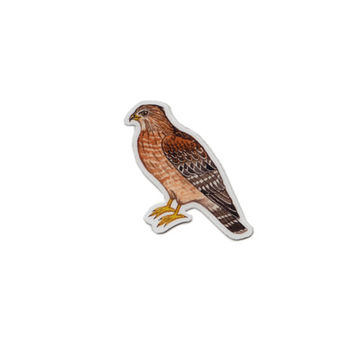 Red-shouldered Hawk Bird Magnet