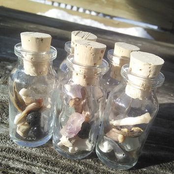 Fox Claw Real Teeth And Bones,Fairy faerie Bottle Vial,Crystals,fairy Strange Weird Curiosities taxidermy oddities, Witchcraft wiccan pagan