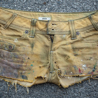Straw Painter Shorts