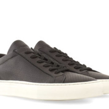 common projects ACHILLES PERFORATED 1701-7547 | gravitypope