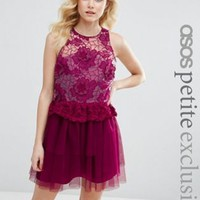 ASOS PETITE 3D Floral Lace Embroidered Mini Prom Dress