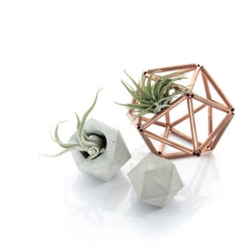 Concrete Icosahedron Set Of Small Planter And Sculpture