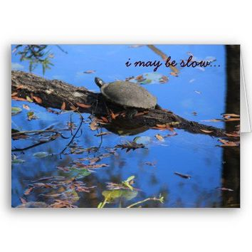 Slow Turtle Belated Birthday Card from Zazzle.com
