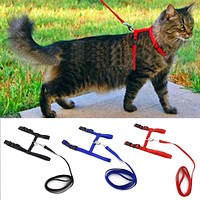 Nylon Cat Adjustable Traction Harness Halter And Leash - 3 Colors