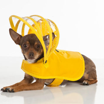 Dog Raincoat - Yellow - Rainbow Line