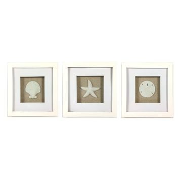 Coastal Beach Framed Shadow Box Trio with Sandstone Sea Shells - Wall Art - Scallop, Starfish, Sand Dollar - Set of 3 - 7-7/8-in