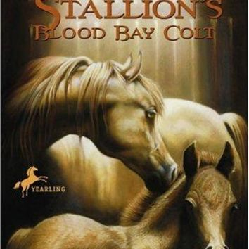 The Black Stallion's Blood Bay Colt (The Black Stallion Series)