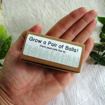 Grow a pair of balls-READY TO SHIP- gag gift- herb seed balls- Oregano and Basil