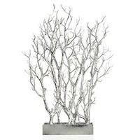 Silver Branch Tree In Pot | Potted Plants & Trees | Botanicals & Plants | Accessories | Decor | Z Gallerie