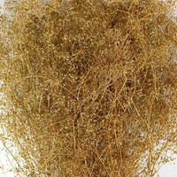 Glittered Preserved Gypsophila in Gold - 4 oz Bunch