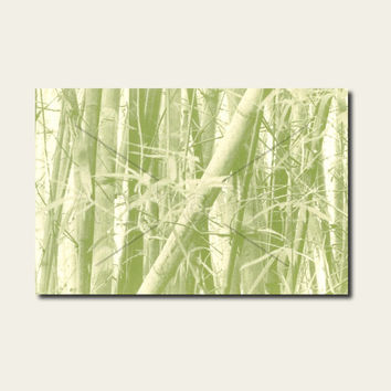 Bamboo Canvas Anthotype Wall Art Print. Bamboo Anthotype Wall Decor Piece for your Prints Ideas.