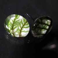 Stair Step Moss (Hylocomium splendens) aka Mountain Fern Moss Earrings, woodland, bryophytes, plant jewellery, nature jewelry, leaf,  green