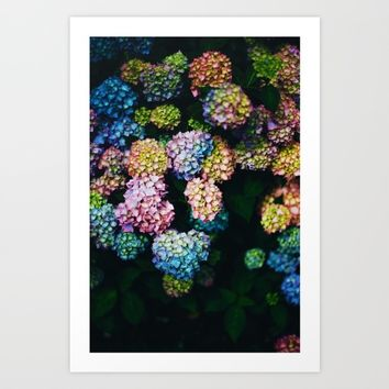 Bellissimi Fiori Art Print by Mixed Imagery