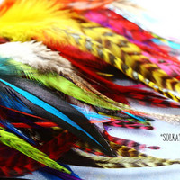 Bulk Feather Supplies, Rooster Feathers Mixed Feathers Colored Craft Feathers Wholesale Feathers, Bulk Affordable Hair Crafts Supplies 60pcs