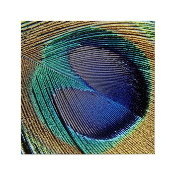 Peacock Feathers Canvas Prints Wall Art Framed Decor Living Room