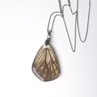 Handmade resin necklace  - Butterfly wing Jewelry, Botanical Jewelry, Pendant Charm, Reiki  charged