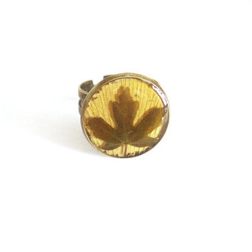 Real leaf ring - Green field maple leaf on yellow ginkgo biloba leaf - Pressed leaf ring - Nature inspired jewelry - Botanical ring - Bronze
