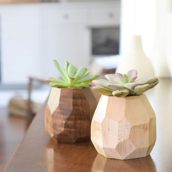 Faceted Geometric Succulent Planter
