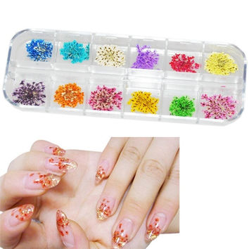 Real Dry Dried Flower Acrylic Nail Art Design Tips Decoration DIY HOT NEW D_L = 1708650948