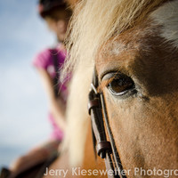 Horse Photography Equestrian Art Western Photo Equine Photo Pony and Rider Brown Blue and Pink Home Decor Wall Art