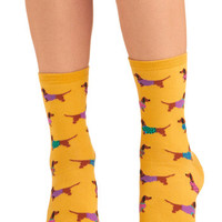 ModCloth Quirky Gold Medal Wiener Dog Socks