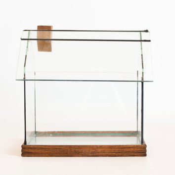 Vintage Glass House Terrarium Mini Greenhouse Display Case, Fern House Miniature Diorama Box for DIY Projects