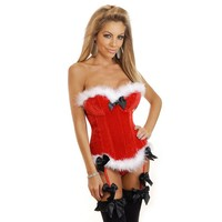 Women's Sexy Red Christmas Santa Costume