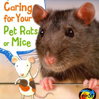 Squeak's Guide to Caring for Your Pet Rats or Mice (Heinemann First Library)