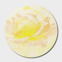 «vintage rose», Exclusive Edition Disk by ARTbyJWP - From $85 - Curioos