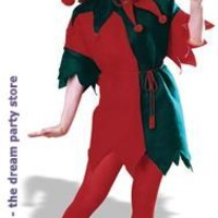 Women's Complete Elf Adult Costume - Green - Standard for Christmas