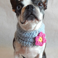 Blue dog Cowl scarf  hand crocheted neck warmer with pink flower  Boston Terrier