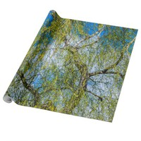 Birch tree - Spring is in the air Wrapping Paper