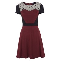 Sugarhill Boutique Darling Spot Mesh Dress