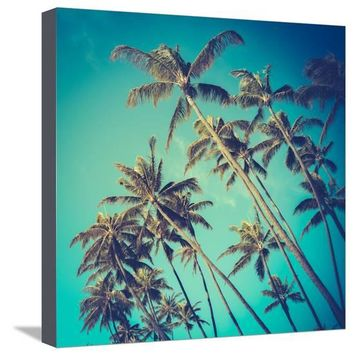 Retro Diagonal Palm Trees in Hawaii Premium Photographic Print by Mr Doomits at Art.com