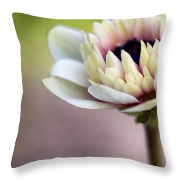 "Early Spring Throw Pillow 14"" x 14"""