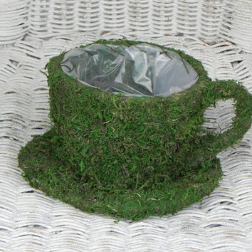 Tea Cup Planter moss container with liner fairy garden supply