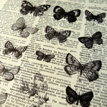 Dictionary Art Print - Upcycled Vintage Paper - Butterfly Specimen - 7-1/4 x 10-1/2