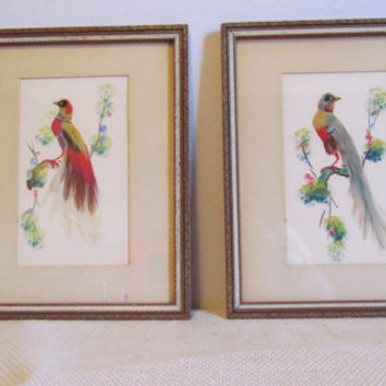 Set of Vintage Mexican Feather Art Bird Wall Art Framed Bird Art Mexican Wall Art