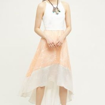 Hutch Peachy High-Low Dress