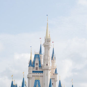 The most magical place on earth.. disney world.. castle.. digital file 8x10