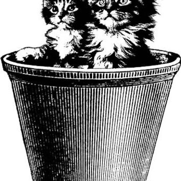 cats Kittens in flower pot clipart  PNG clipart Digital Image Download cats pets animal art graphics image printable art